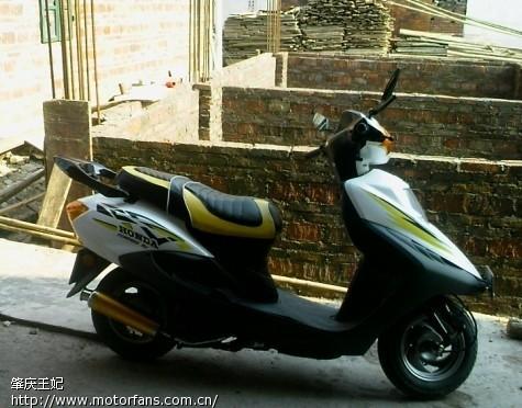 摩托车论坛 踏板论坛 新大洲本田-踏板车讨论专区 03 自创茜茜公主