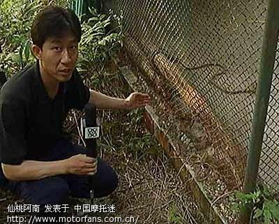 湖北省仙桃市太子湖野生动物园
