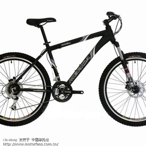自行车买什么牌子好