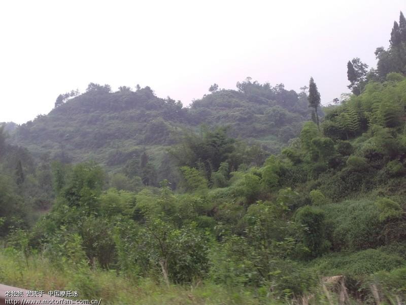 晚来的报告——江津骆来山风景区