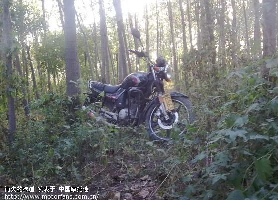2w公里07天剑坏后轮轴承了 摩托车 高清图片