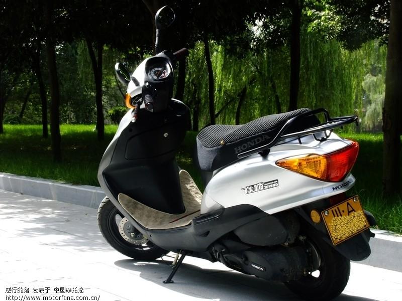 摩托车论坛 五羊本田-踏板车讨论专区