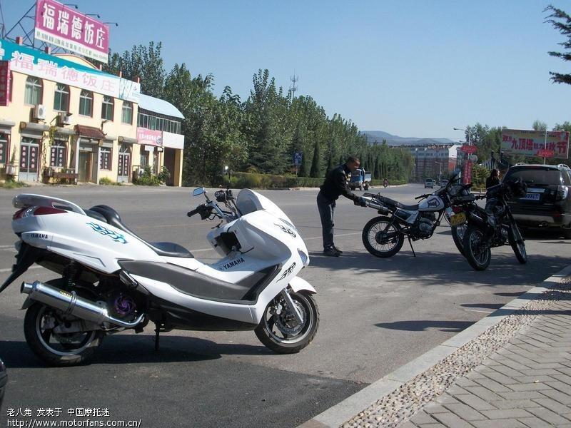 论坛表情~另有图片:驱车直扑nz#1-摩托车图片不青蛙鸭青蛙包v#1图片