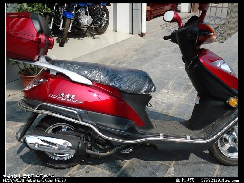 红色天龙星150 - 豪爵铃木-踏板车讨论专区 - 海王星