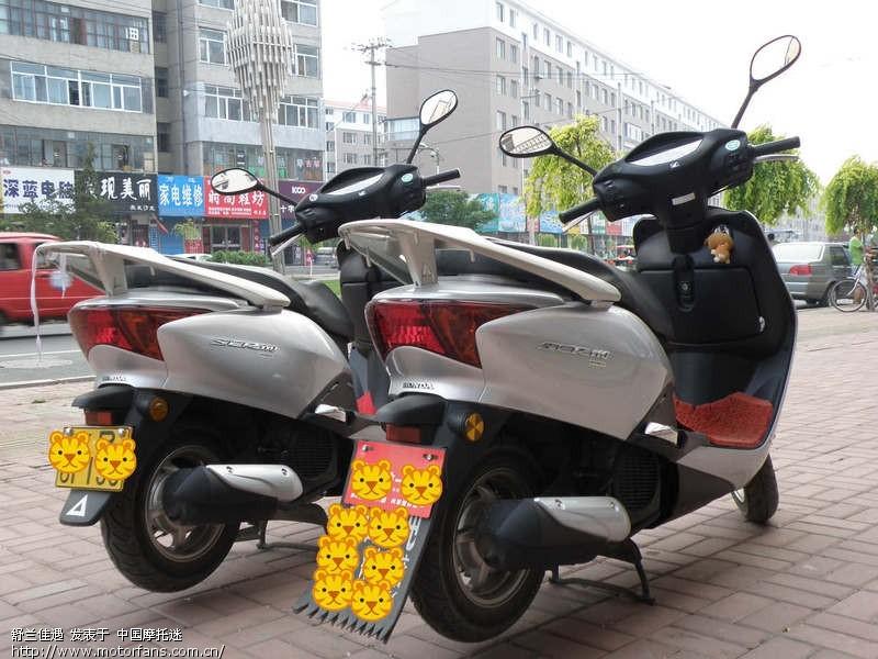 摩托车论坛 五羊本田-踏板车讨论专区 五羊本田-佳御(甲鱼) 03 我和