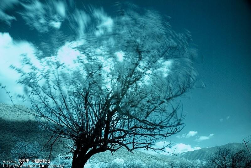 . 像风一样自由