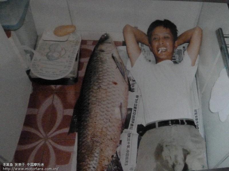 三乌青钓上的52斤唐诗!-渔友视频-摩托车论年前之家感遇图片