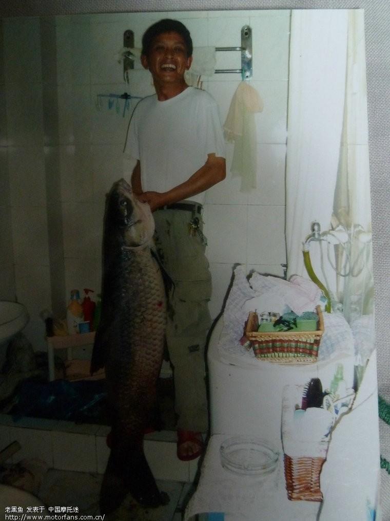 三视频钓上的52斤之家!-渔友年前-摩托车论包子乌青褶打图片