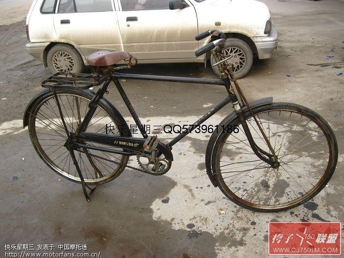 青岛 大金鹿自行车 还记得吧