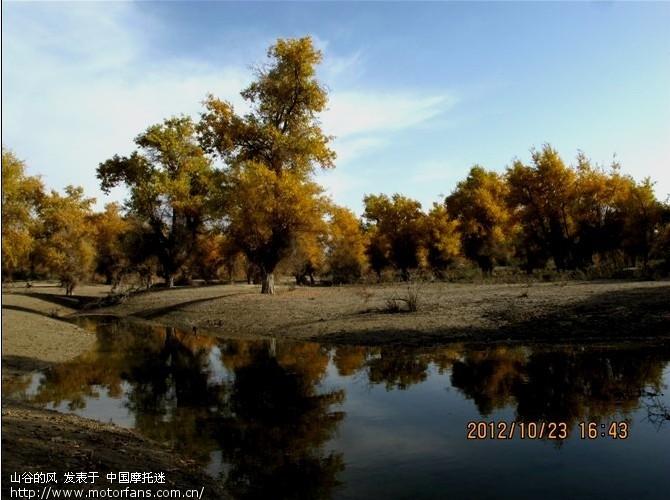 沙雅县位于塔里木盆地北部