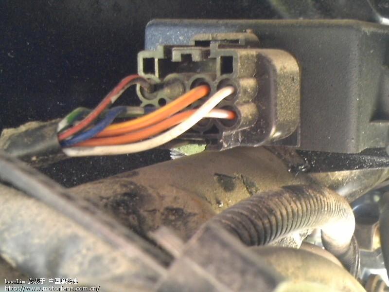 求教 骏威3l 点火器上的接头接线-济南铃木-摩托车版