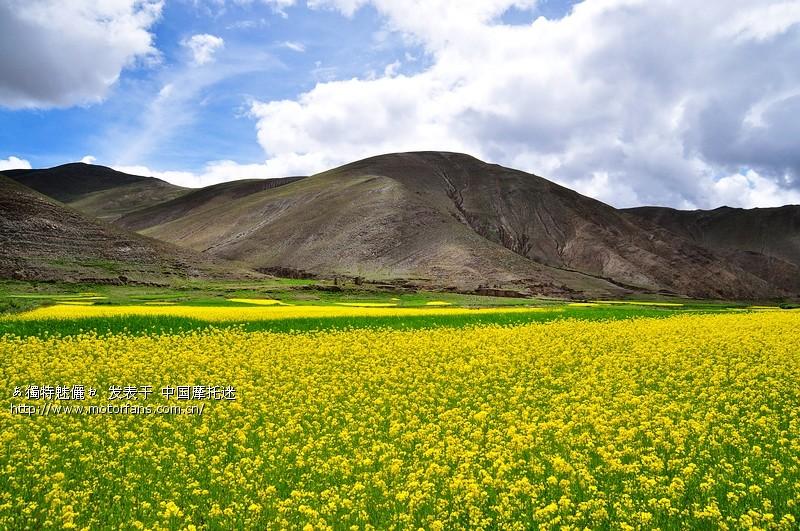 标题: 穿越喜马拉雅,探寻藏南密境,长征白菜伴我纵横不丹边境!