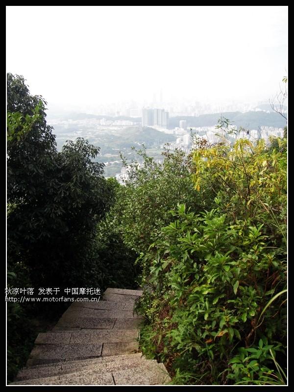 深圳小梧桐山(深圳电视塔)