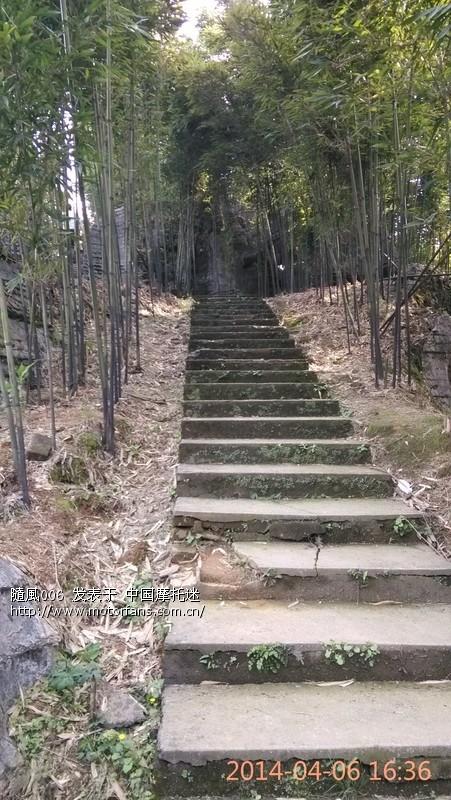 03 西部竹石林景区