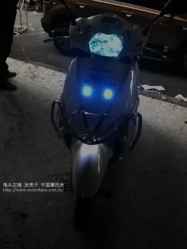 china贵州黔东南州白甲鱼报道! - 五羊本田-踏板车