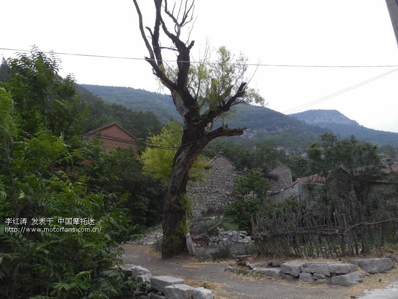 [2] [3] [4] 下一页 山东摩友交流区  ---> 大山深处的石头村    赵八