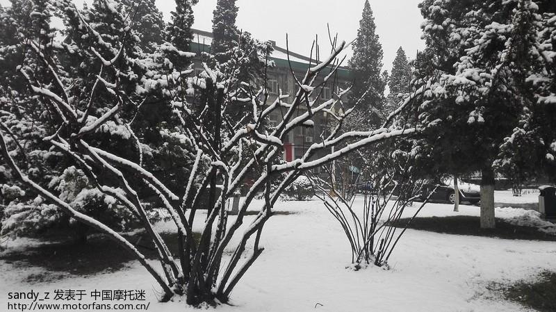 2015年春天的第一场雪!