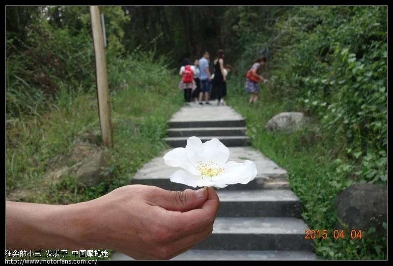 练习发帖之肖家沟聚会,璧山水天池,龙桂寺