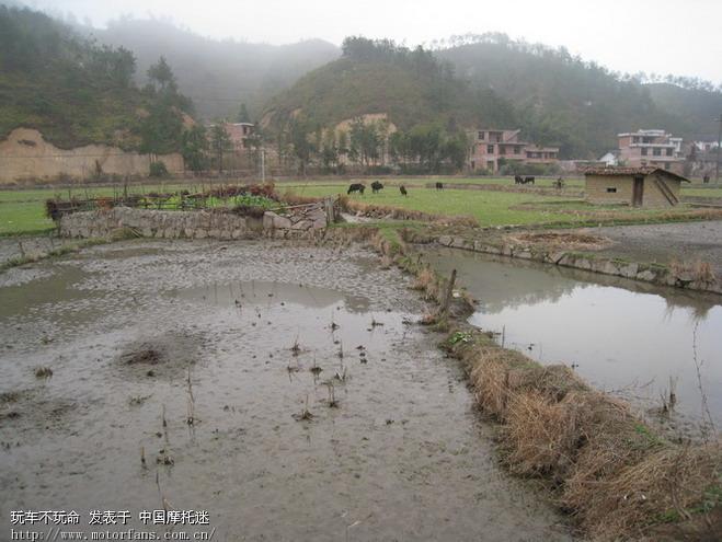 农村山水真实照片