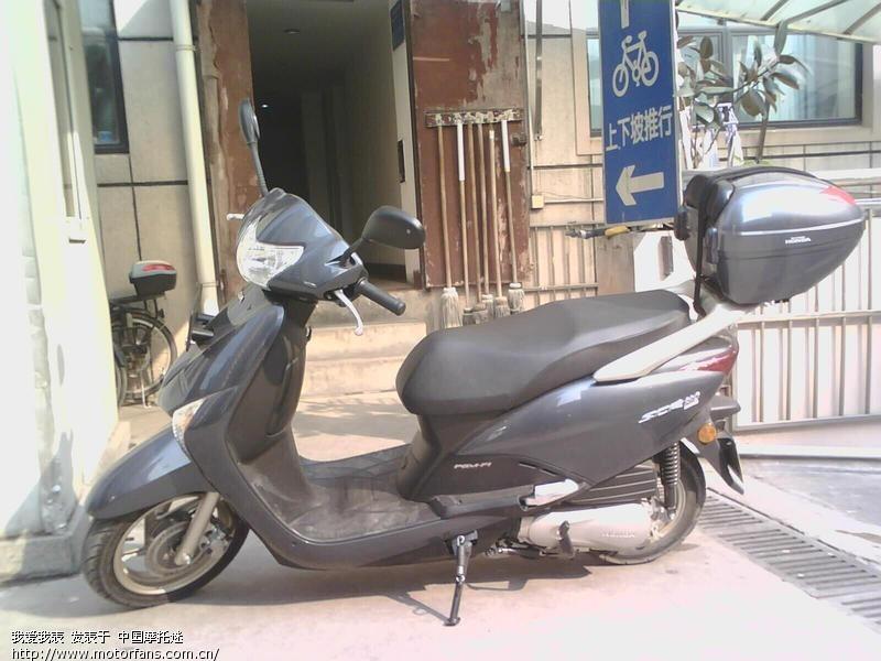 摩托车论坛 五羊本田-踏板车讨论专区 五羊本田-佳御(甲鱼) 03 本灰